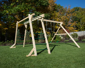 Monkey bars and swing set.